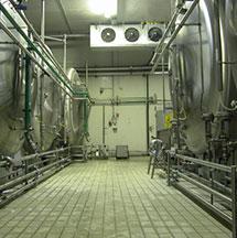 Cantina di fermentazione